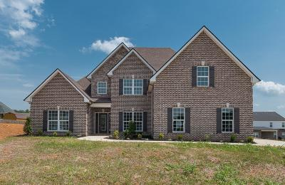 Murfreesboro Single Family Home For Sale: 1120 Sycamore Leaf Way