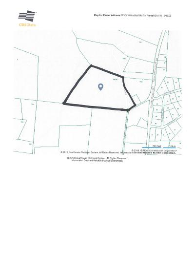 White Bluff TN Residential Lots & Land For Sale: $475,000