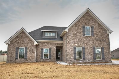 Murfreesboro Single Family Home For Sale: 2317 Tin Cup Dr.- #86