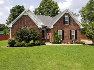 Murfreesboro TN Single Family Home For Sale: $259,000