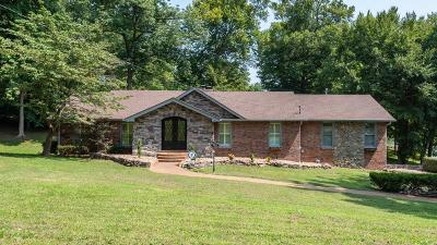 Hendersonville Single Family Home For Sale: 597 Indian Lake Rd