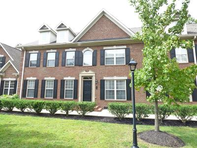Franklin Condo/Townhouse For Sale: 109 Brilliantine Cir