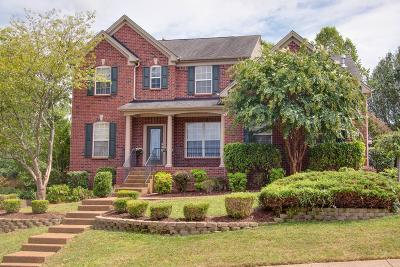 Hendersonville Single Family Home For Sale: 119 Windham Dr
