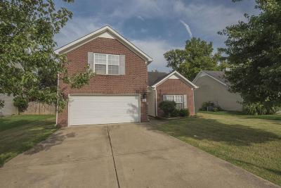 Smyrna TN Single Family Home For Sale: $265,000