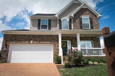 Mount Juliet TN Single Family Home For Sale: $314,900