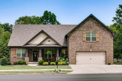 Gallatin Single Family Home For Sale: 236 Far Away Hills Dr