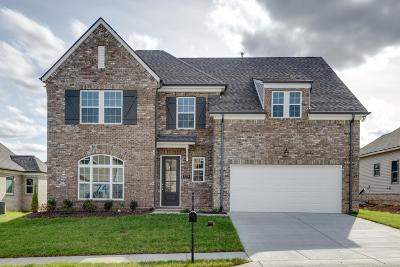 Smyrna TN Single Family Home For Sale: $399,900