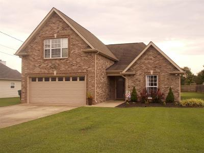 Mount Juliet TN Single Family Home For Sale: $305,000