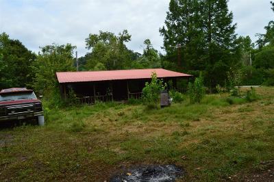 Stewart Single Family Home For Sale: 110 Little Fork Rd