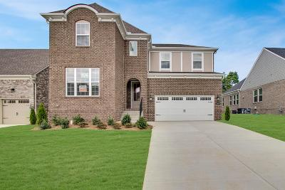 Mount Juliet Single Family Home For Sale: 3048 Elliott Drive #72