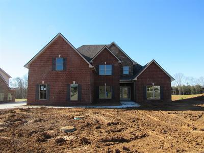Murfreesboro Single Family Home For Sale: 1111 Sycamore Leaf Way