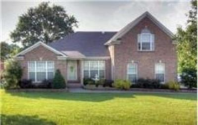 Mount Juliet Single Family Home For Sale: 4000 Timber Ridge Ct