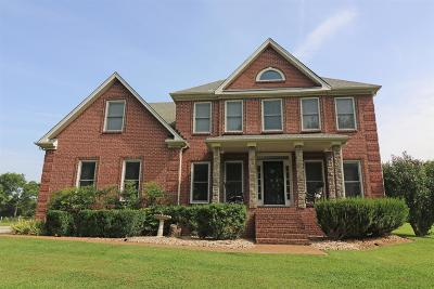 Mount Juliet Single Family Home For Sale: 7268 N Lamar Rd