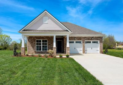 Mount Juliet Single Family Home For Sale: 411 Butler Road, Lot #205