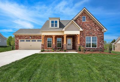 Mount Juliet Single Family Home For Sale: 513 Cunningham Court, Lot #213