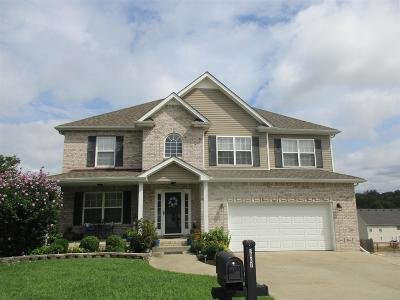 Clarksville Single Family Home For Sale: 3067 Outfitters Drive