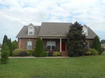 Christiana TN Single Family Home For Sale: $389,900