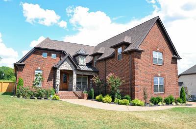 Mount Juliet Single Family Home For Sale: 1701 Amhurst Point