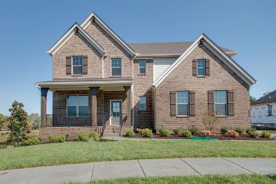 Nolensville Single Family Home Under Contract - Not Showing: 117 Hankins Court #172