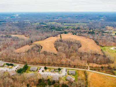 Bon Aqua, Burns, Charlotte, Cumberland Furnace, Dickson, Lyles, Vanleer, White Bluff Residential Lots & Land For Sale: 635 Bar B Q Rd