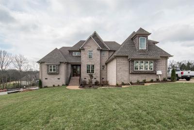 Hendersonville Single Family Home For Sale: 1091 Luxborough Drive