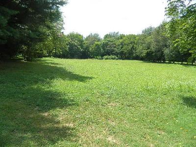 Thompsons Station  Residential Lots & Land Under Contract - Showing: 4939 Bethesda Rd