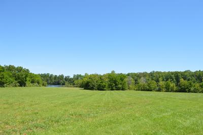 Residential Lots & Land For Sale: N Bell Dr W Lot 60