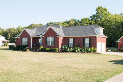 Columbia Single Family Home For Sale: 1001 Derryberry Farms Rd