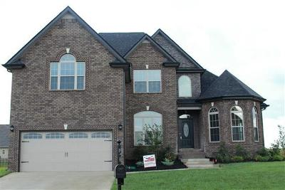 Clarksville Single Family Home For Sale: 3520 Clover Hill Dr