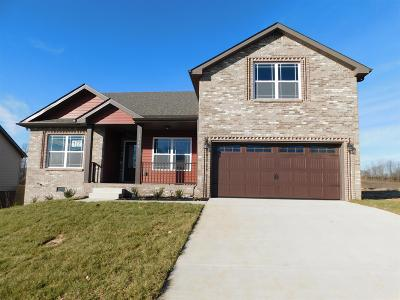 Clarksville Single Family Home Under Contract - Showing: 17 Hazelwood Court