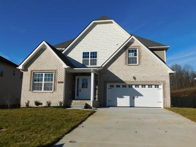 Clarksville Single Family Home For Sale: 14 Hazelwood Court