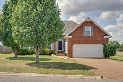 Single Family Home For Sale: 2941 Hearthside Dr