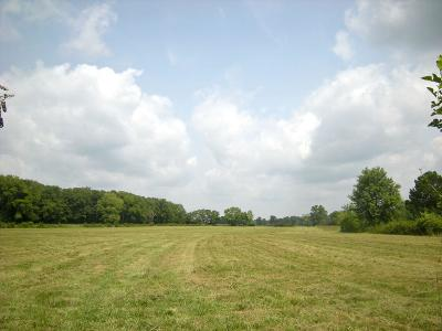 Rutherford County Residential Lots & Land For Sale: 2036 Swamp Leanna Rd