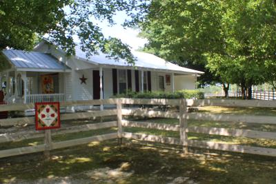 Charlotte Single Family Home For Sale: 1409 Highway 49 E