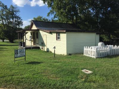 Robertson County Single Family Home For Sale: 205 Main Street