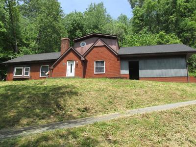 Houston County Single Family Home For Sale: 70 Chestnut St
