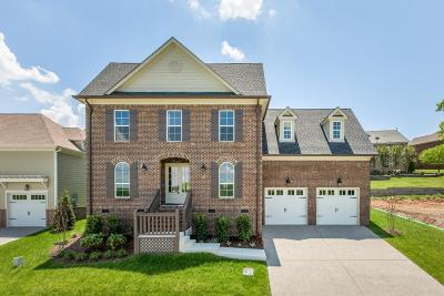 Franklin Single Family Home For Sale: 230 Rich Circle