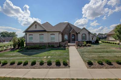 Clarksville Single Family Home For Sale: 1488 Overlook Pointe