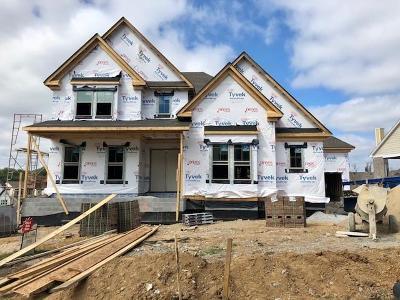 Nolensville Single Family Home For Sale: 155 Telfair Lane #13