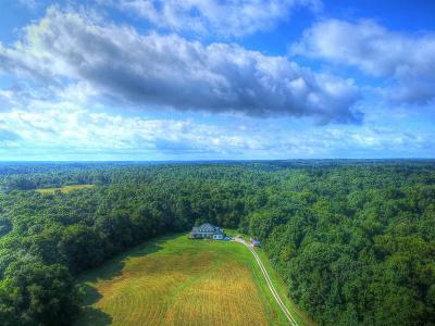 Hurricane Mills Single Family Home For Sale: 1635 Dyer Rd