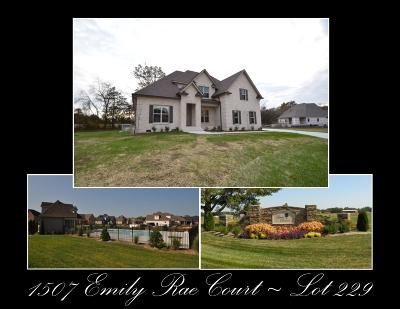 Single Family Home For Sale: 1507 Emily Rae Court - Lot 229