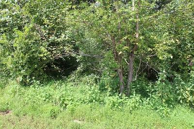 Clarksville Residential Lots & Land For Sale: Dotsonville Rd