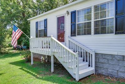 Mount Pleasant Single Family Home For Sale: 514 Southport Rd
