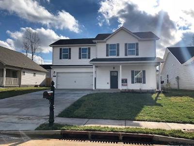 Clarksville Single Family Home For Sale: 553 Medallion Circle
