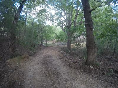 Hohenwald Residential Lots & Land For Sale: 790 Buffalo Rd