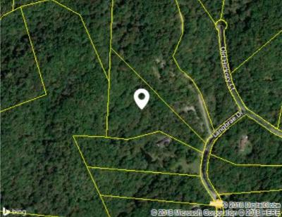 Goodlettsville Residential Lots & Land Under Contract - Showing: 19 Langbrae Drive Lot 19