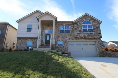 Clarksville Single Family Home For Sale: 570 Fields Of Northmeade