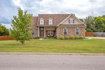 Spring Hill Single Family Home For Sale: 3401 Clegg Dr