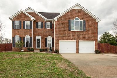 Spring Hill Single Family Home For Sale: 1809 Elizabeth Ct
