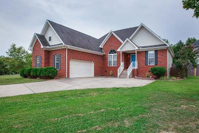 Spring Hill Single Family Home For Sale: 1800 Portview Dr